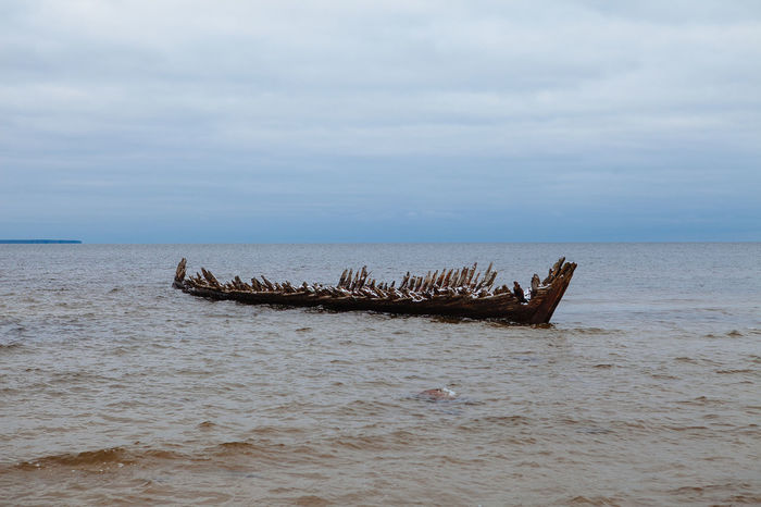 Abandoned Beach Beauty In Nature Cloud - Sky Day Horizon Over Water Nature Nautical Vessel No People Outdoors Scenics Sea Sky Sunken Tranquility Transportation Water