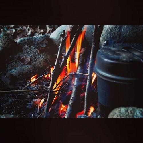 焚き火 Bonfire 直火 焚き火臭 Camping Outdoor キャンプ