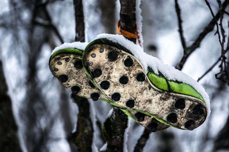 Soccer - footballer old shoes hanging on the tree. Ball Branch Close-up Defeated Foot Football Footballer Forgotten From The Bottom Goal Hanging Lose Lost Nobodycares Old Outdoors Shoe Shoes Snow Soccer Sport Spotted Trainer Tree Winter Fresh On Market 2017
