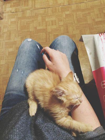 На маникюре ) котейка:3