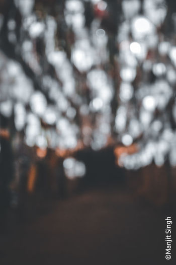 Defocused image of cherry tree