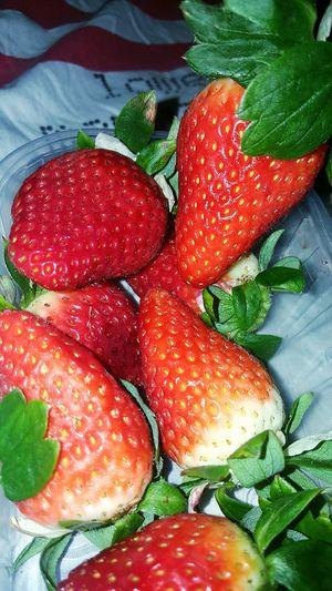 Fraise Morangos Paixão Frutas