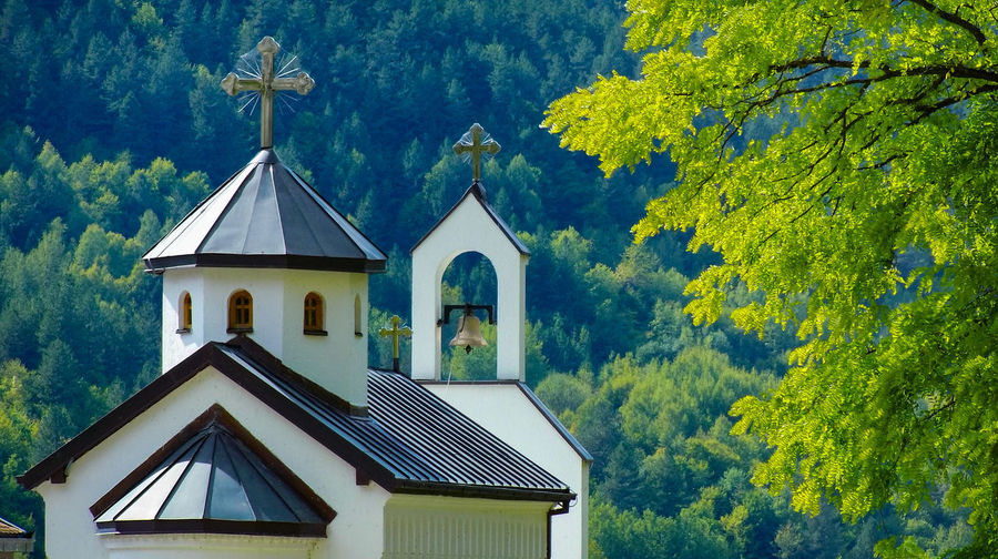 Church Against Trees In Forest