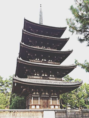 National Treasure Architecture Historical Building Temple 国宝 興福寺 五重塔