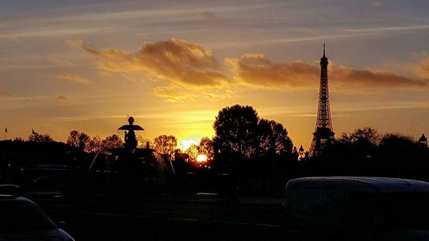 French Sunset 🇫🇷 Eiffel Tower Unlimitedparis Paris Parisfrance LoveParis Placedelaconcorde Toureiffel Parisphoto Sunset Silhouette Tree Cloud - Sky No People Sky Outdoors Day Nature EyeEmNewHere Shades Of Winter
