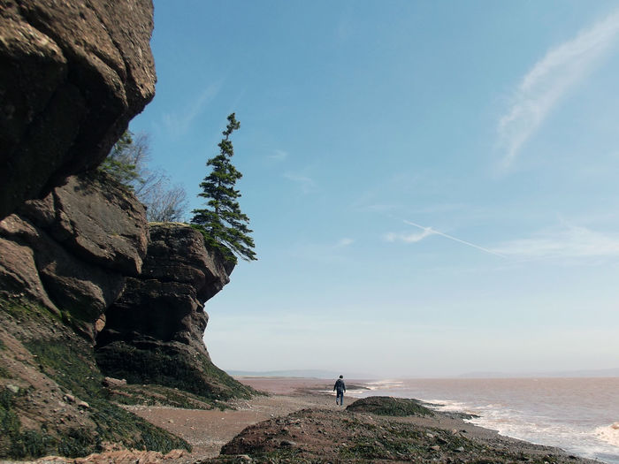 Man Walking Below Cliff's Edge Beach Beauty In Nature Cliff Day Horizon Over Water Leisure Activity Lifestyles Men Nature One Person Outdoors People Real People Rock - Object Rock Formation Scenics Sea Sky Standing Tranquil Scene Tranquility Tree Water An Eye For Travel
