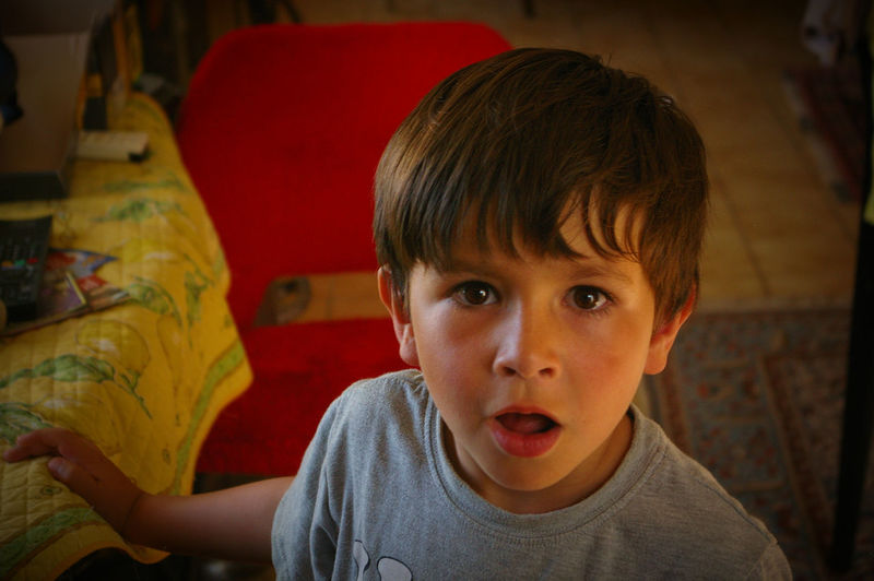 Portrait of shocked boy at home