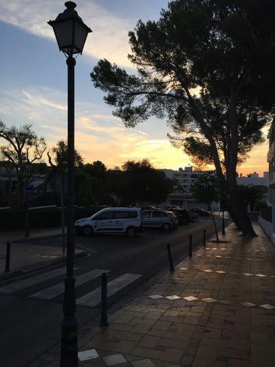 Cala d'Or, Santanyi, Mallorca Caladrama Nofilter Mallorca