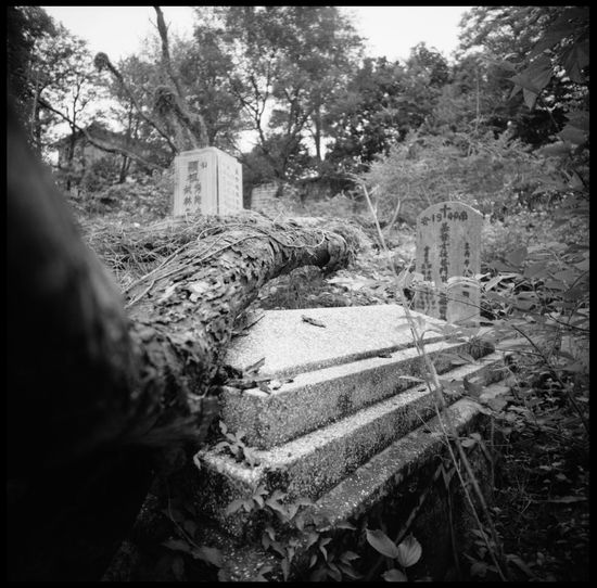 the abandoned catholic cemetery of gulang yu Abandoned Cemetery Abandoned Places Analogue Photography ASIA Black And White Catholic Catholic Cemetery Catholic In China Cemetery China Christians In China Death Graves Graveyard Gulang Yu Island Lomography Medium Format Outdoors Philosophy Tomb Travel Wild Graveyard Xiamen Xiamen China