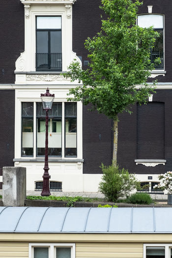 Amsterdam Amsterdam Canal Architecture Building Building Exterior Built Structure Canal Boat City Day Glass - Material Green Color Growth House Lampost Nature No People Outdoors Plant Potted Plant Residential District Sunlight Transparent Tree Window