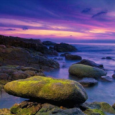 ร่างกายต้องการทะเล Sea Seascape Sunset Sunrise Rock Stone Mos Green Nature Fresh Morning Thailand Samui DSLR Vivid Vibrance Igersthailand Sublimewilderness Photo_forest_gold Awesome_travels