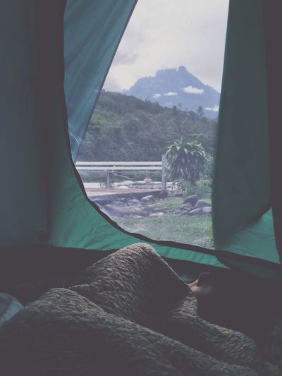 Camping Scenery Nature Morning