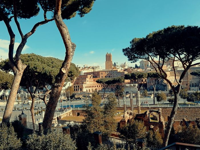 View over ancient Rome Rome Italy Ancient Ruins Temple Roman Roman Empire Ancient Architecture Ancient Culture History Tourism Travel Destinations Tree City Sky Architecture Visiting Historic Old Ruin Archaeology Ancient History The Past Famous Place International Landmark Ancient Rome