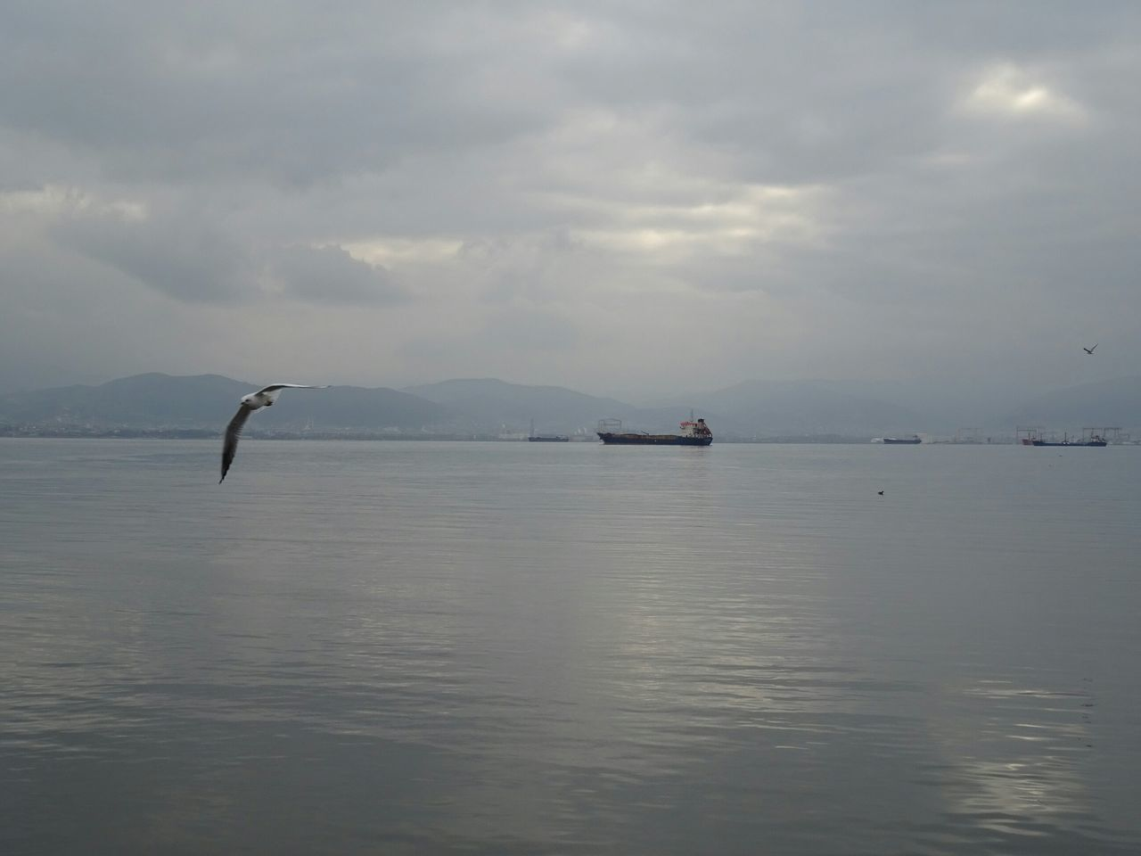 Distant View Of Container Ships In Sea