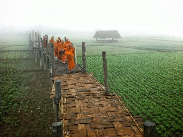 by iPhone4 First Eyem Photo Monks Monks Walk Alms Giving Alms Bowl Buddhist Buddhism Buddhist Temple Buddhist Monks Buddhist Temple In Thailand Morning Alms Thai Monk Foggy Morning Monk  First Eyeem Photo IPhone 4