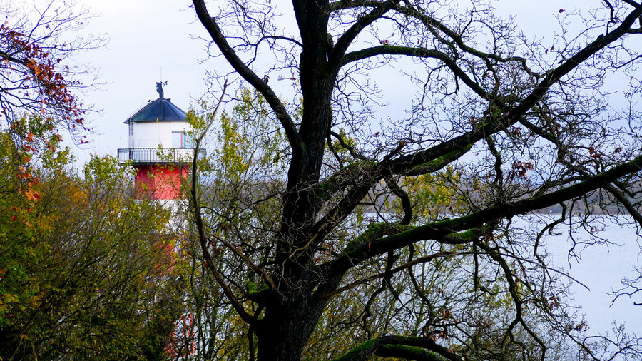 lighthouse Lighthouse Lighthouse_lovers Lighthousephotography Lighthouse Tower Autumn Autumn Colors Autumn🍁🍁🍁 Autumn 2017 Autumnbeauty Tree Bare Trees Bare Tree Riverside River View Hamburg River Elbe Beauty In Nature Beauty In Ordinary Things Tree No People Day Branch Sky Outdoors Growth