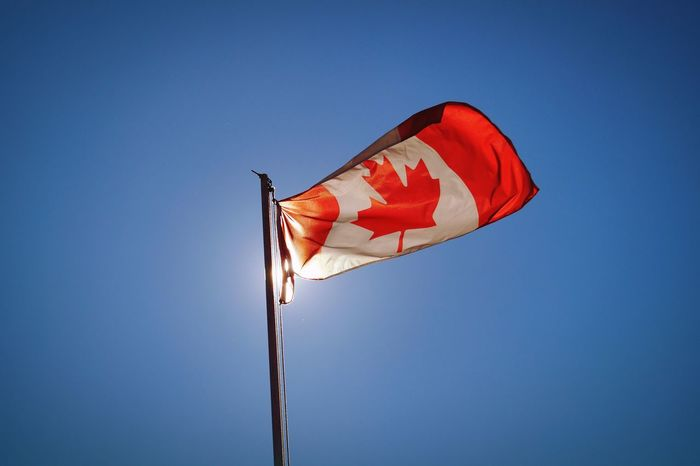 Maple Leaf Canada Canadian Flag Flag Red Sunny Day Bright Bowen Island Summer Proud Beautiful British Columbia