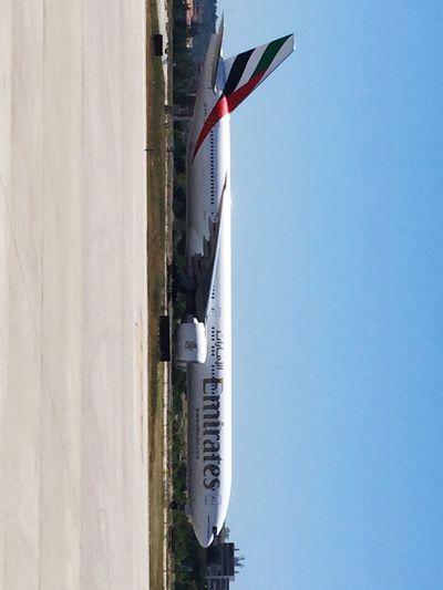 Bigairplane Boeinglovers Emiratesairline