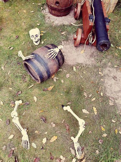 Lifestyles Human Body Part Skeleton Hopefully It Was Rum Rum Rum Go Rum Blossom NICE WAY TO DIE ?