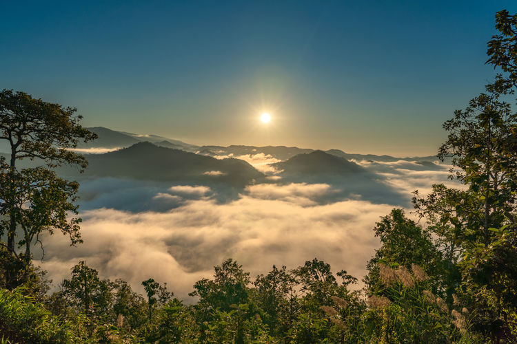Sunrise in the morning with fog and mountain, Chiang mai, Thailand Sunrise Sunset Fog Sky Tree Beauty In Nature Tranquility Tranquil Scene Scenics - Nature Plant Sun Mountain Nature No People Non-urban Scene Cloud - Sky Idyllic Growth Outdoors Sunlight Moon Moonlight Forest Chiangmai Chiang Mai | Thailand