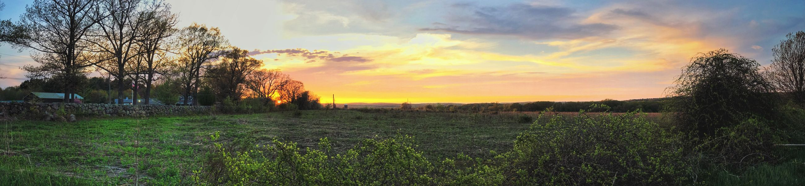 Colors of a Sunset (Panoramic View) Plant Sky Sunset Beauty In Nature Tranquil Scene Tranquility Cloud - Sky Growth Scenics - Nature Field Land Environment Landscape Tree Grass Orange Color No People Nature