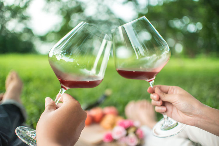 Adult Alcohol Celebration Celebratory Toast Day Drink Finger Focus On Foreground Food And Drink Glass Group Of People Hand Holding Human Body Part Human Hand Lifestyles Outdoors Real People Red Wine Refreshment Togetherness Wine Wineglass Women