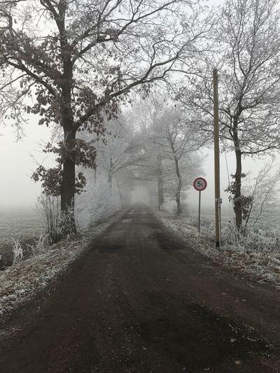 Winter immer wieder schön 59662
