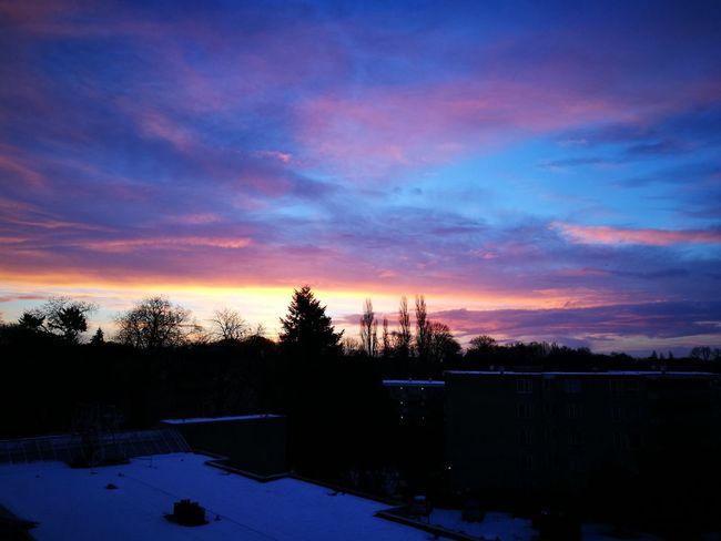 EyeEmNewHere Sunset #sun #clouds #skylovers #sky #nature #beautifulinnature #naturalbeauty #photography #landscape Arnhem Snow Covered Colorful Sky