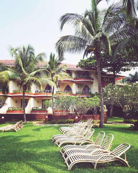 Luxury golf resorts by the beach. Weekendvibes Travelblogger Tripoto Traveldiaries Followme Holiday Vacaymodeforever Doyoutravel Wanderlusting Lbbgoa Resorts Weekendtravel Vacations Poolside Moments Relaxing Golf Course Beachside Golflife Goa Caravella Resort Palms Recliner Greens