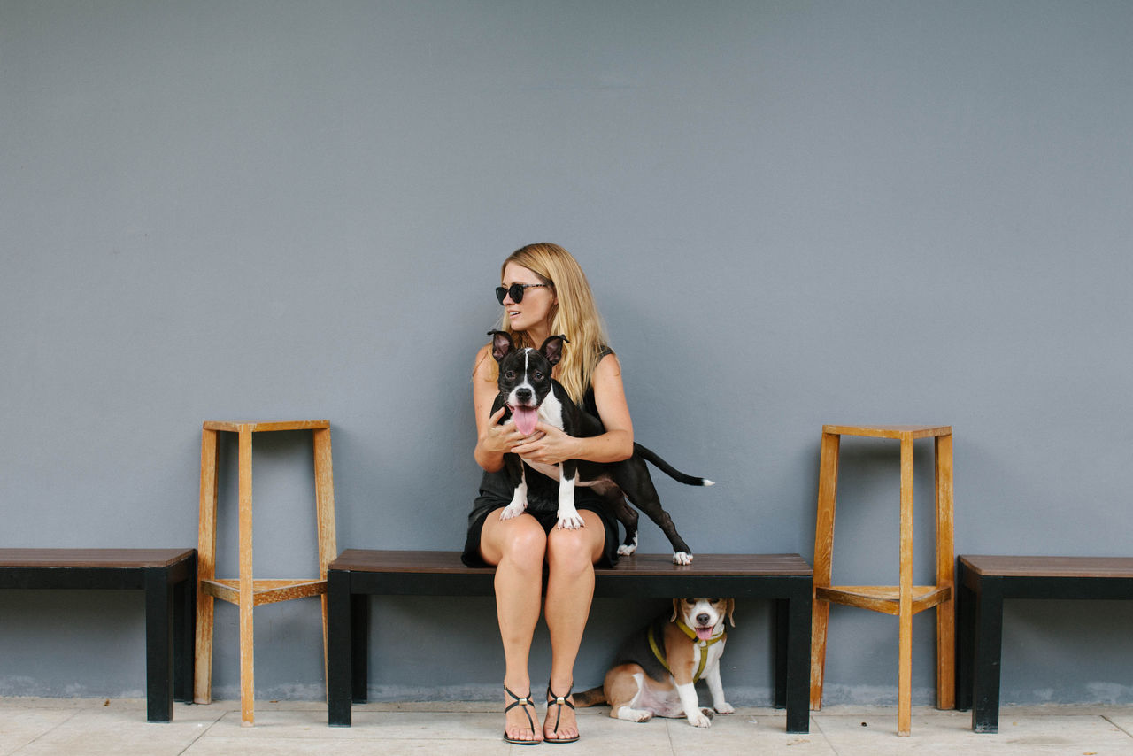 Young Woman With Dogs Sitting On Bench Against Wall