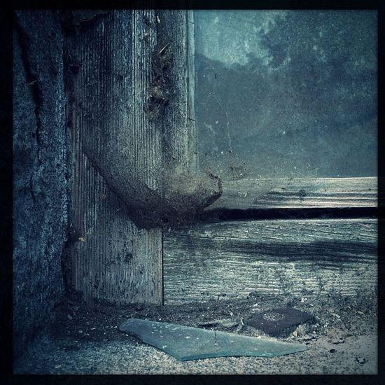 eben noch Fenster geputzt und jetzt? Bavaria Lumber Wood Timber Glass Dreck Germany STAUB Lines Linien Window Glasscherbe Holz Spinnennetz Dirt Deutschland Brokenglass Spiderweb Bayern Fenster Dust