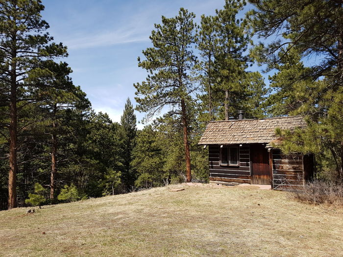 Cabin In The Woods Cabin Cabin Life Cabin Fever Woods Trees Lookout Mountain Colorado