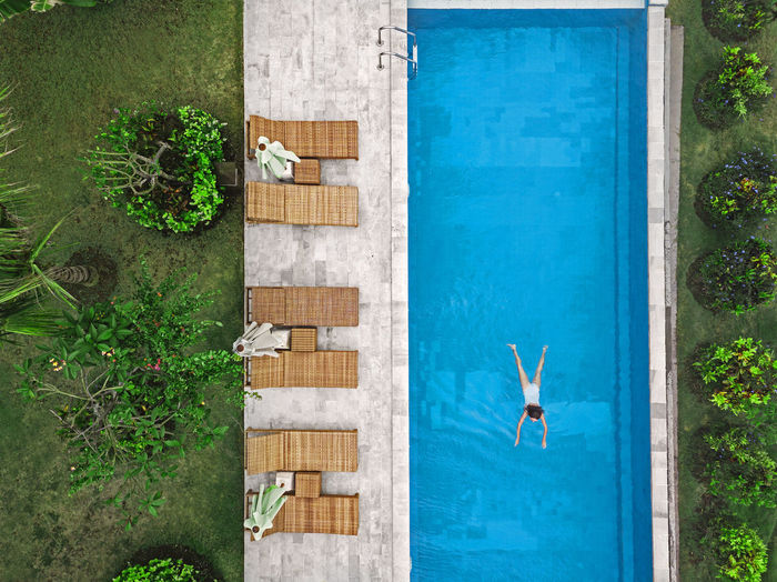 High angle view of plants by swimming pool against building