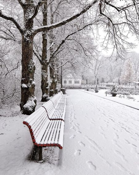Empty benches on snow covered trees during winter
