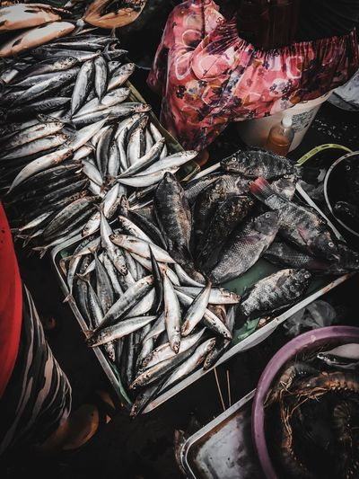 Fish be with you ✌🏻🐟 High Angle View Still Life No People Abundance Close-up Large Group Of Objects Day Animal Fishing Fishing Industry For Sale