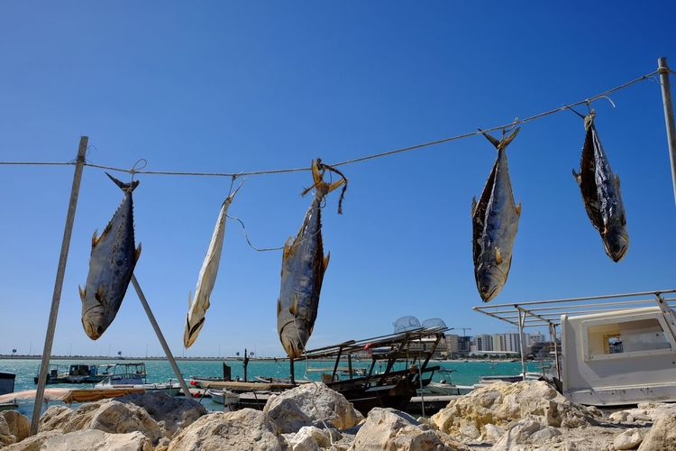 Low angle view of clothes hanging against clear sky