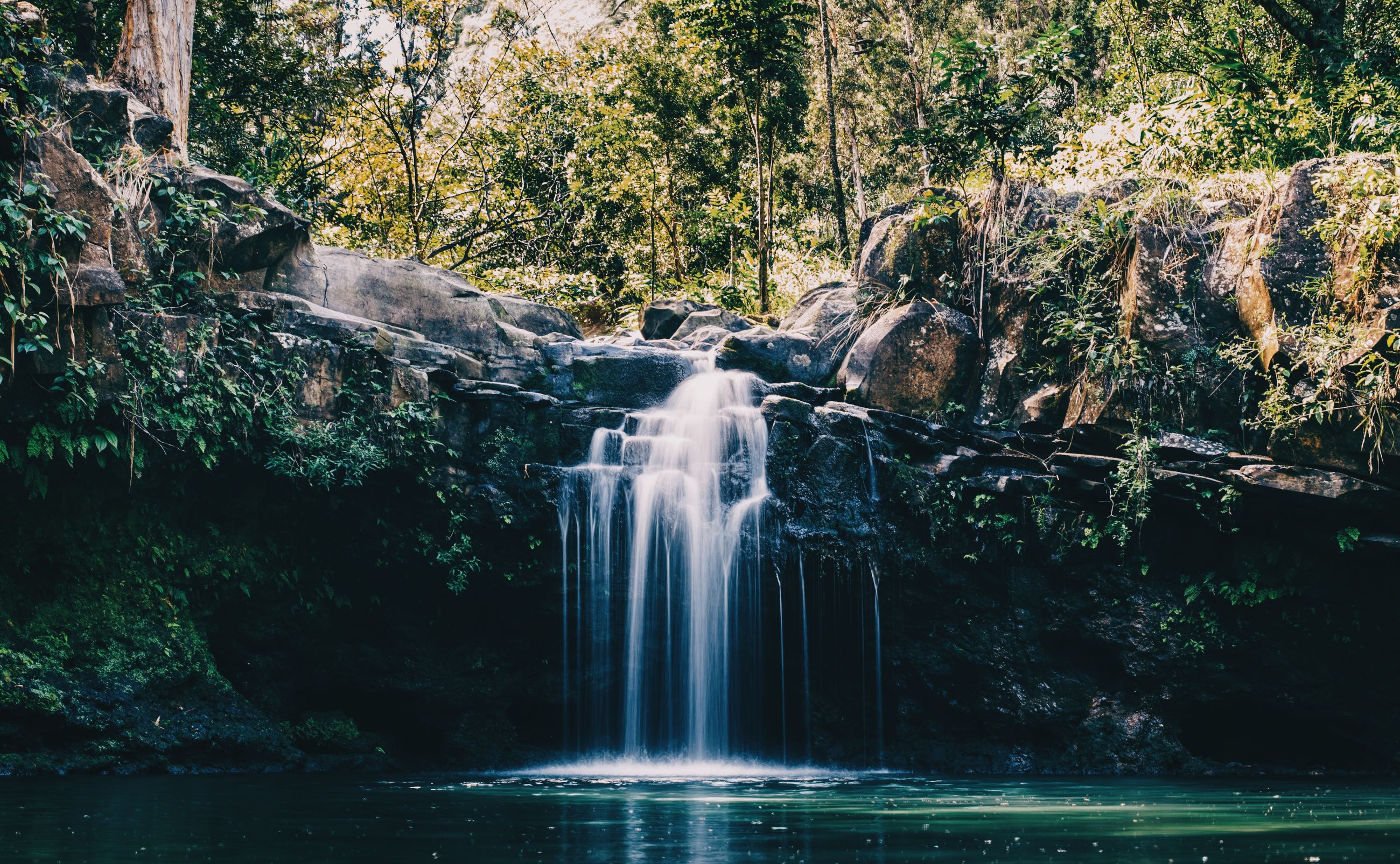 water, flowing water, tree, motion, waterfall, waterfront, flowing, fountain, long exposure, nature, splashing, beauty in nature, reflection, growth, forest, scenics, plant, day, tranquility, outdoors