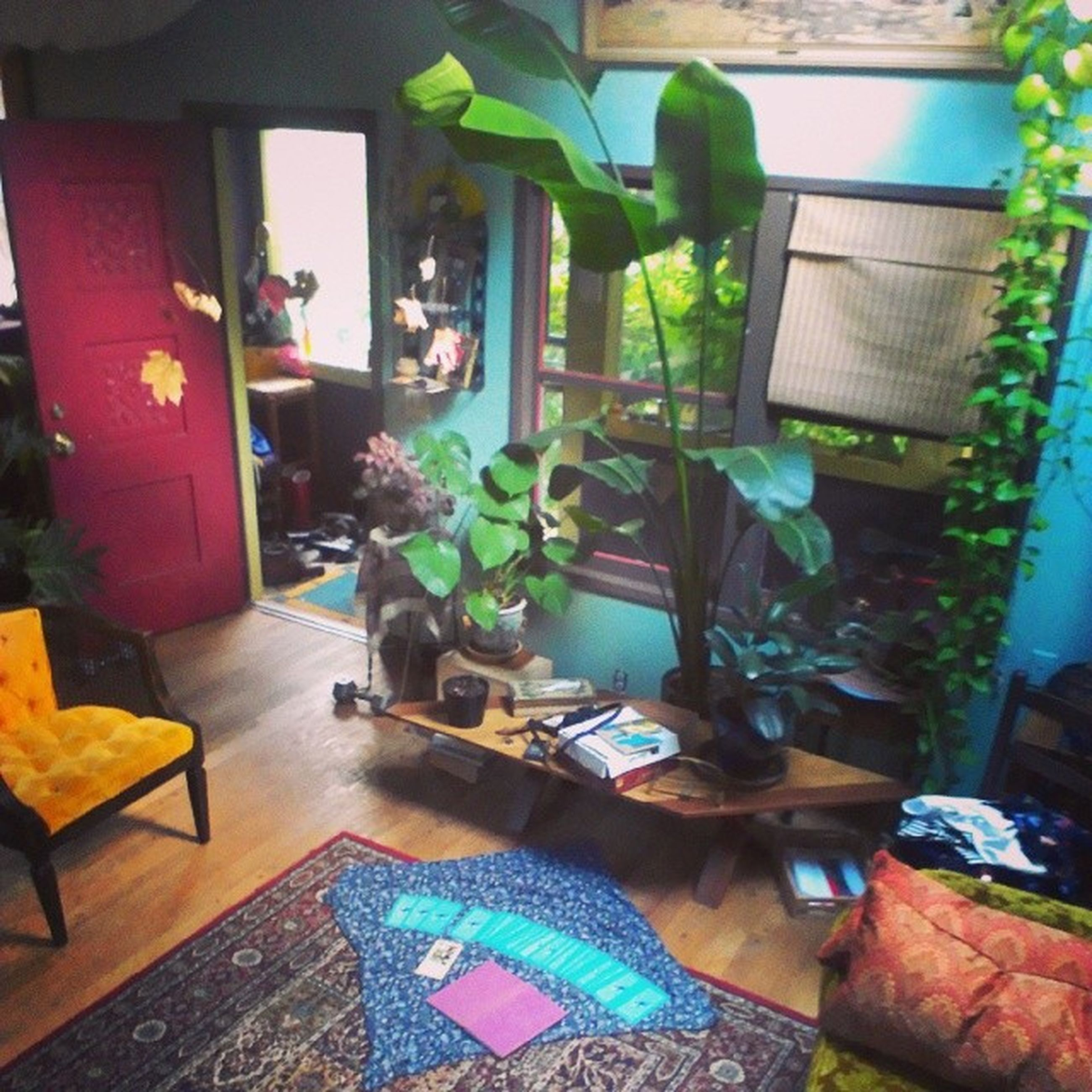 indoors, table, chair, home interior, absence, potted plant, house, furniture, empty, wood - material, built structure, window, sofa, architecture, day, domestic room, no people, sunlight, wall - building feature, high angle view