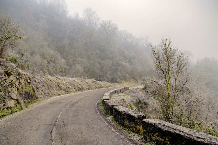 Fog Direction Road The Way Forward Transportation Plant Tree Nature Tranquil Scene Beauty In Nature Tranquility Day Non-urban Scene No People Mountain Scenics - Nature Empty Road Outdoors Environment