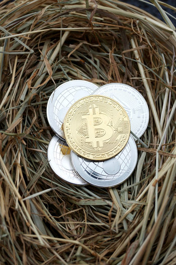 Crypto coin examples Bit coin ripple and ethereum in a straw nest Currency Ethereal Xrp Blockchain Close Up Close-up Crypto Currency Cryptos Digital Currency Directly Above Ethereum Finance High Angle View Krypto Metal Money Nest No People Nobody Nobody Around Rippled Saving Silver Colored Straw Währung