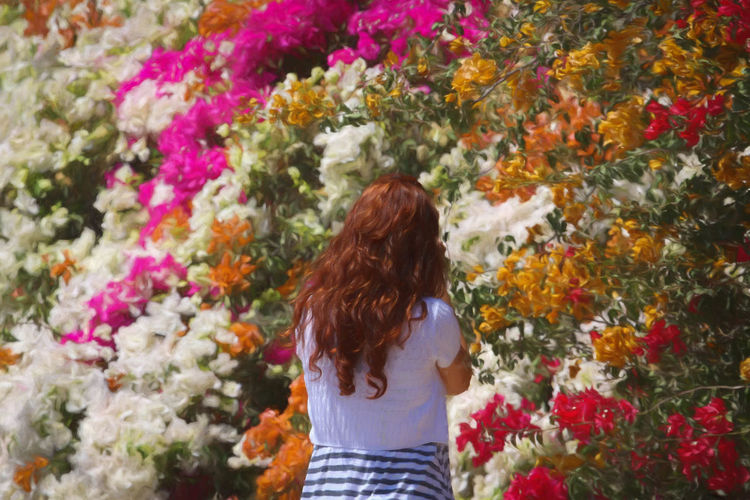 Rear view of woman standing by multi colored flowers
