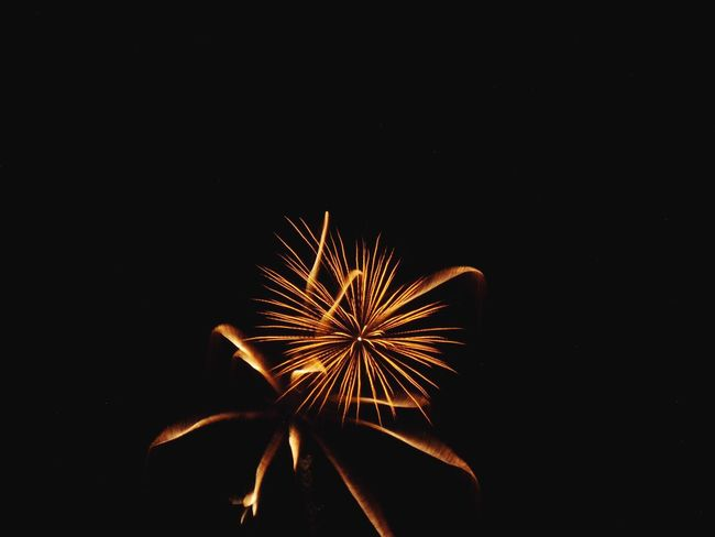 Celebration Night Sky Fireworks Uri The Week On EyeEm