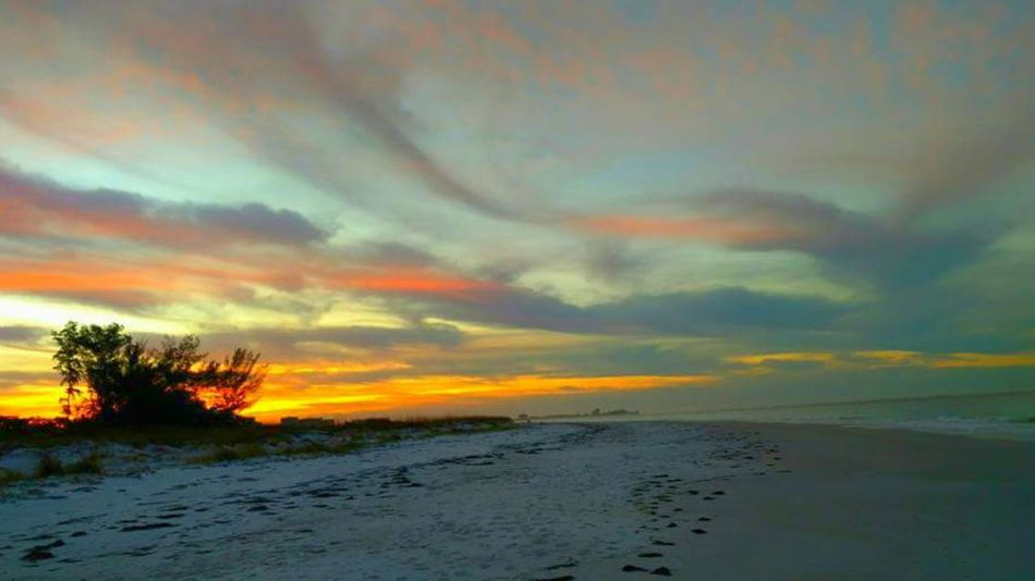 One can never get tired of watching a sunrise! Rise And Shine Beauty Above Skycollection Sunrise_Collection Sunrise Beach Sunrise Colorful Sunrise Cloud Streaks What A Sight What A View Beach Photography Gulf Of Mexico Lido Key Sarasota Florida Salt Life Beach Walks