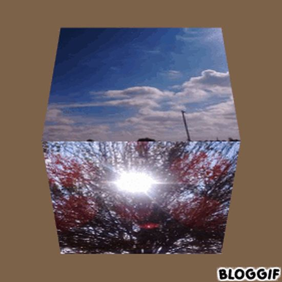Gif Cube Sky Cloud - Sky Outdoors Sport Stadium Close-up One Person Sun Day Adults Only Only Men One Man Only Ice Hockey People Adult