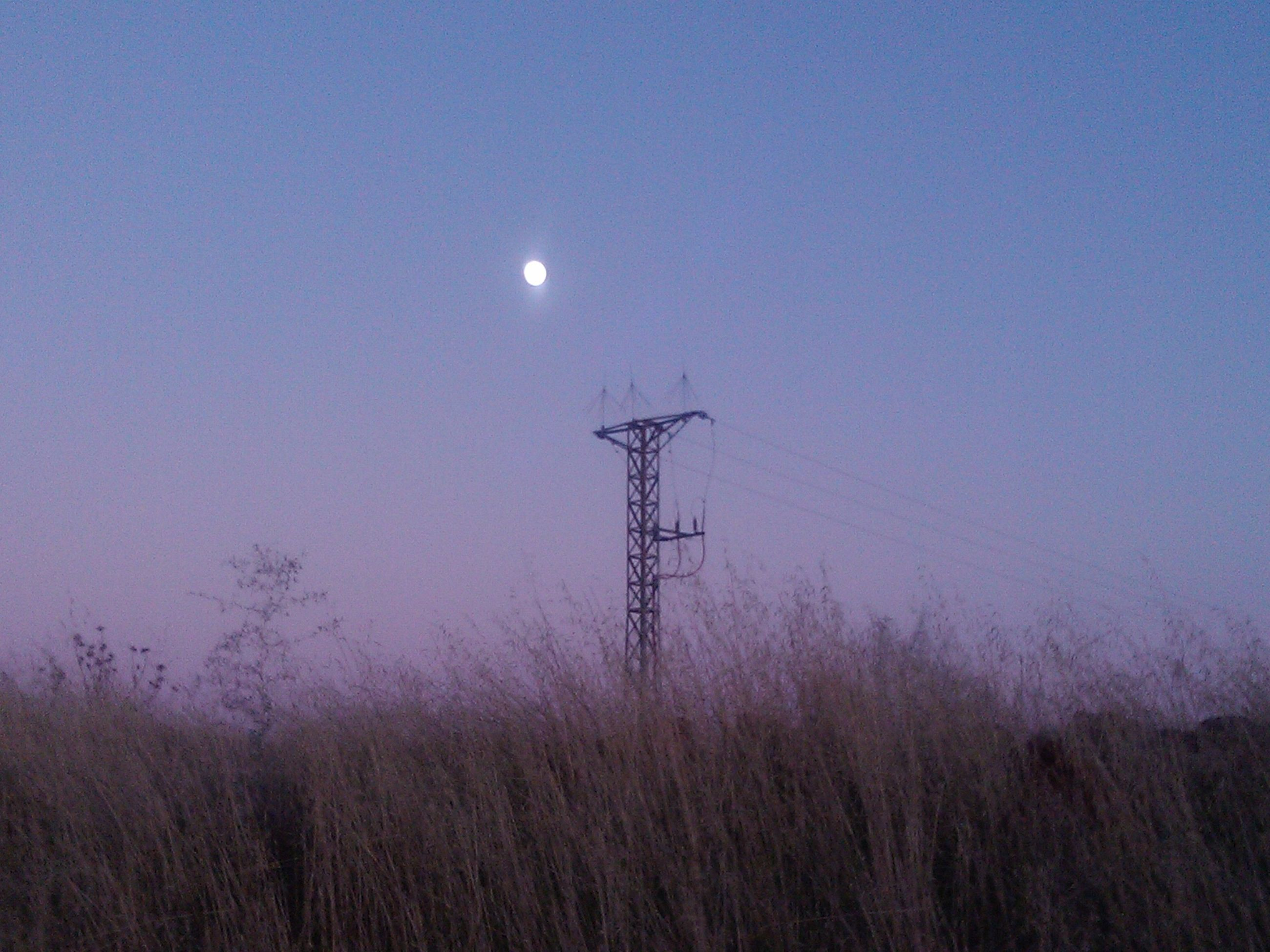 clear sky, electricity, moon, tranquility, tranquil scene, copy space, nature, fuel and power generation, dusk, power line, electricity pylon, beauty in nature, scenics, silhouette, technology, low angle view, night, power supply, sky, field