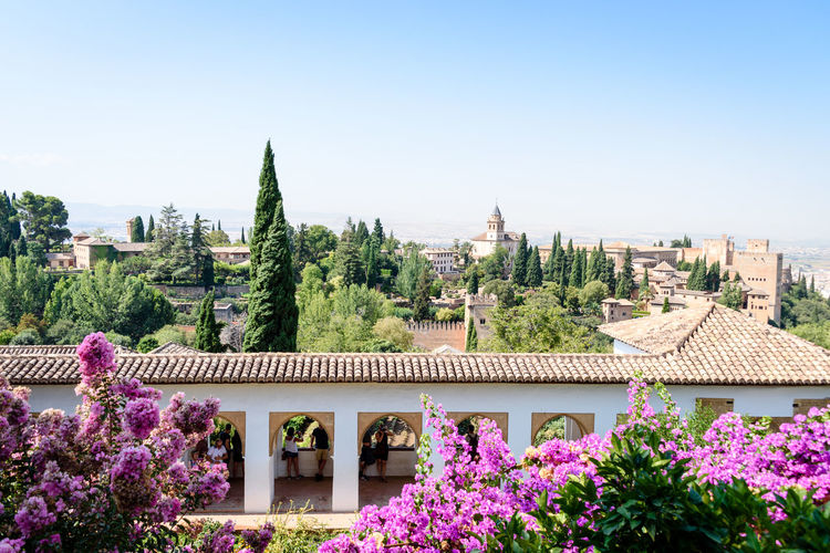 Scenic shot shot with trees and buildings on a summer day from the Alhambra in Granada Alhambra De Granada  SPAIN Scenic Summertime Sunny Travel Traveling Trees Building Building Exterior Day first eyeem photo Flowers Garden Old Outside People Scenics Summer Travel Destinations