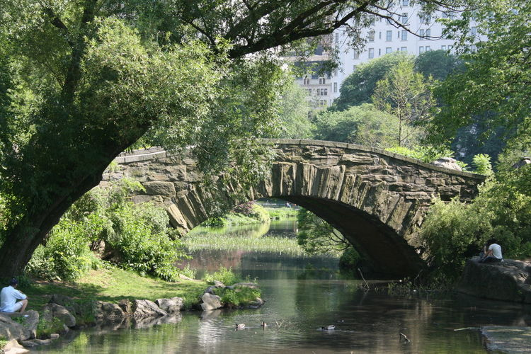Bridge Over River In Central Park