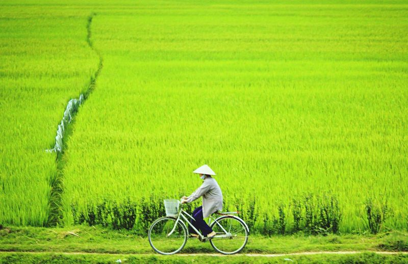 Man with bicycle on field