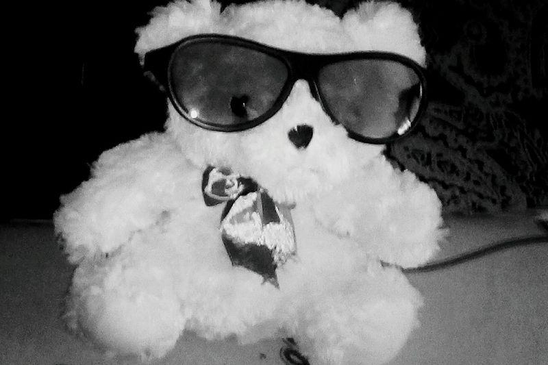 Always Be Cozy Teddy Bear Teddybear Teddy Ted мишка Glesses чернобелое черно-белое чернобелоефото черно-белое фото Blackandwhite Black And White Black & White No People игрушка Мягкая игрушка Toy Soft