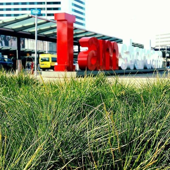 First Eyeem Photo Photography Travel Photography Picoftheday Photooftheday Around The World Bellezzanellasemplicità Enjoying Life Travel Beautiful Day Taking Photos Relax Iamsterdam Amsterdamcity Amsterdam Schiphol Schipolairport